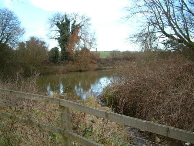 Polhampton Ponds