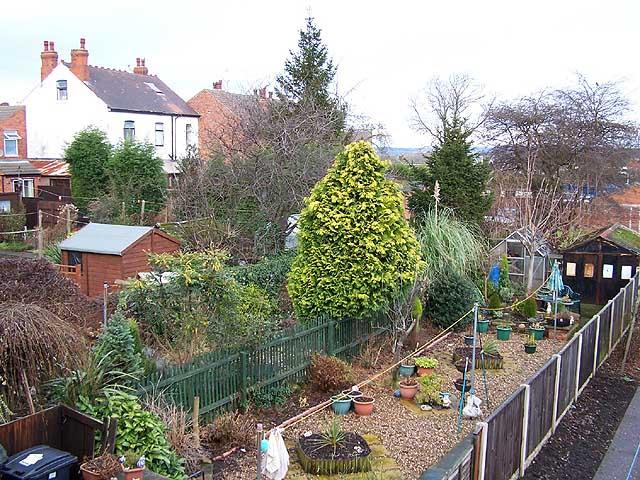 Back Gardens