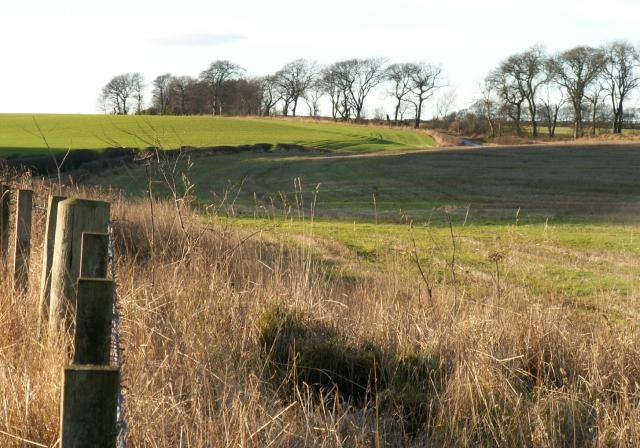 Farmland by Thomsford.