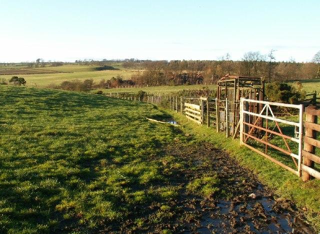 Farmland by Carlhuley