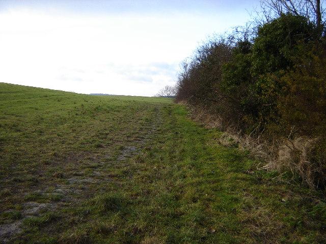 Field near Princes Risborough