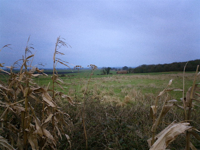 Looking North East towards Delph End Farm
