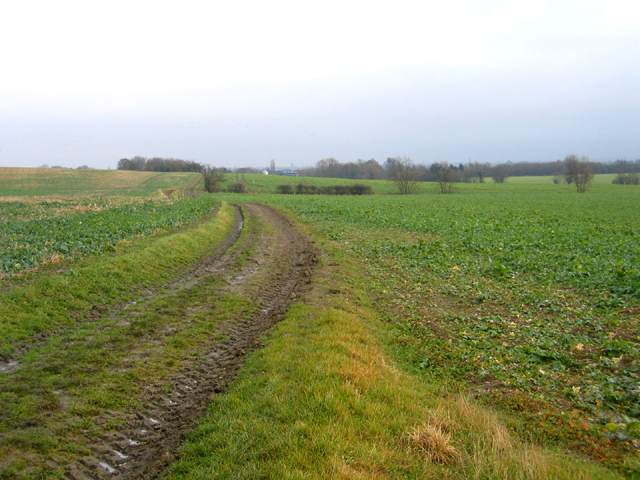 Whitwell Way, Coton, Cambs