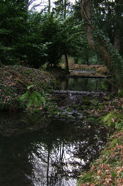 The Water Steps, Thorp Perrow Arboretum