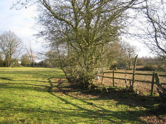 Footpath by Lodge Green Farm