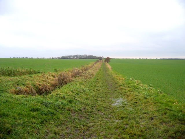 Port Way bridleway, from Long Road, Comberton, Cambs