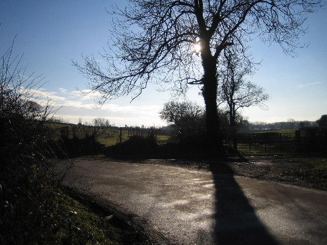 Harvest Hill Lane