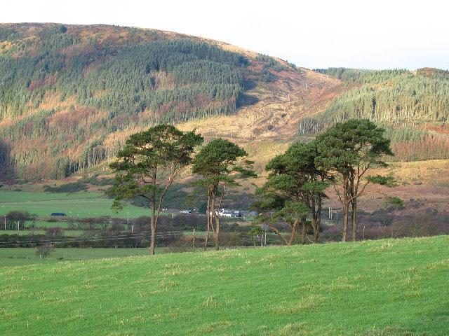 Rhonadale Glen, Carradale.
