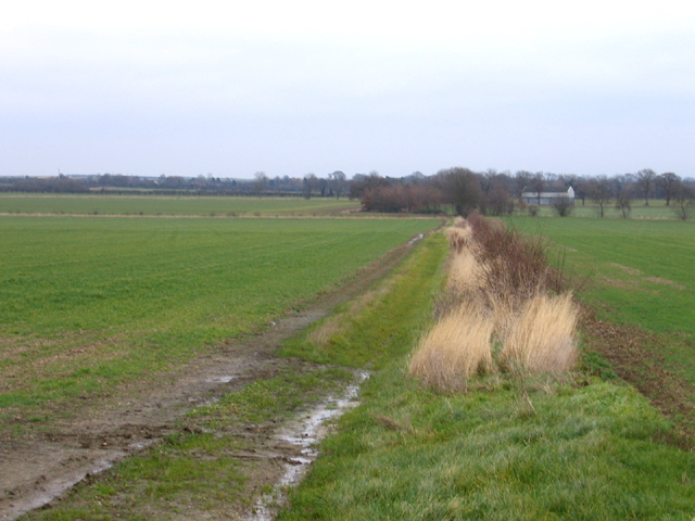 Farmland NE of Toft, Cambs