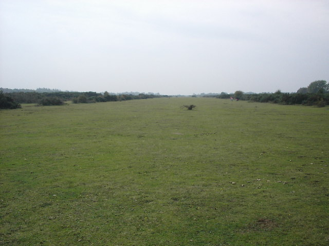 Line of  former runway, Holmsley South airfield (Plain Heath)