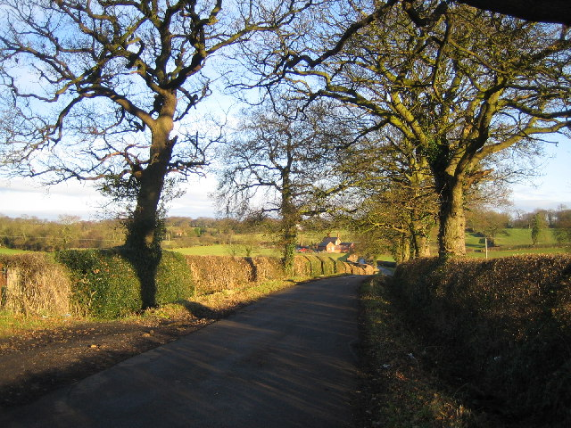 Pikers Lane
