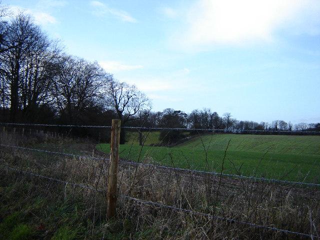 Fields Near Thedden Grange
