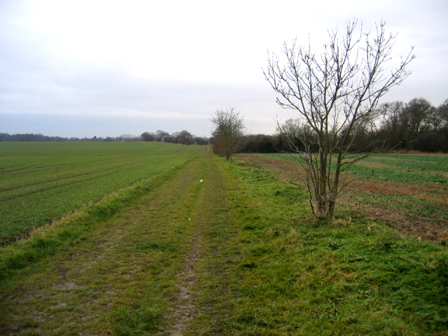 Port Way bridleway S of Hardwick, Cambs