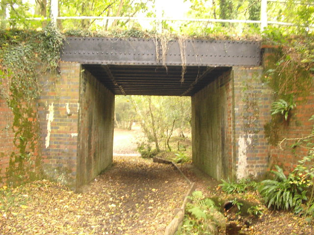 Underpass beneath former railway line, New Forest