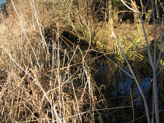 The County Ditch at Pikes Corner