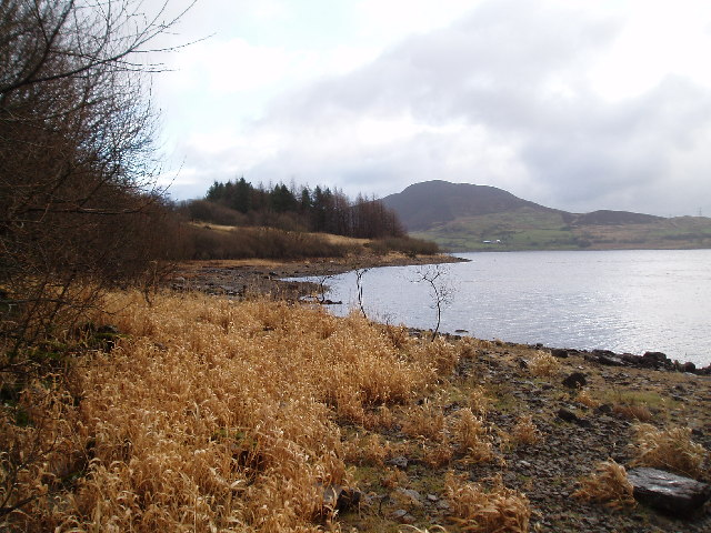 Looking SE across Llyn Celyn  towards Mynydd Nodol
