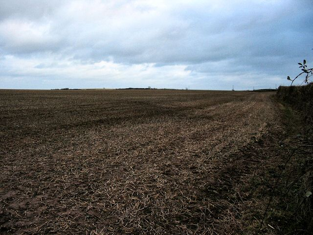 Winter field - South Hams