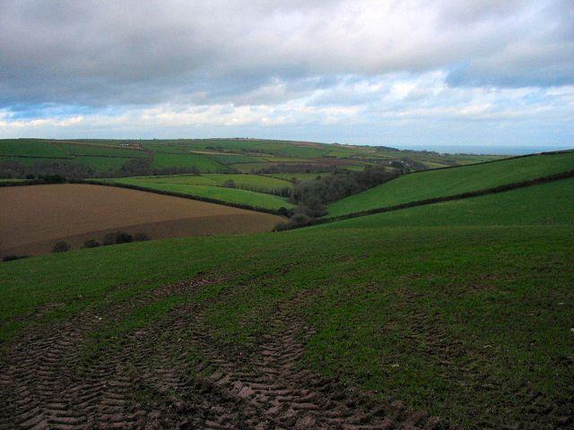 Valley near Harleston - South Hams
