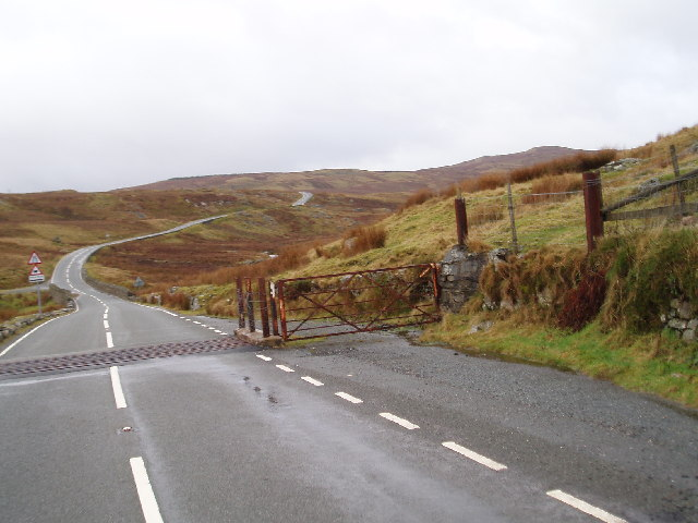 Cattle Grid on the B4391
