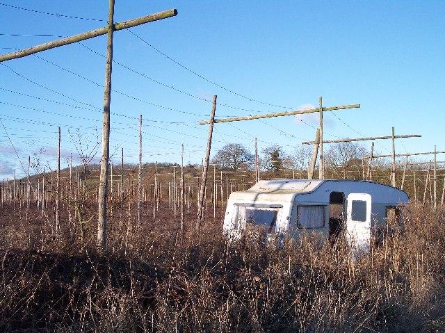 Caravan in Hop Field