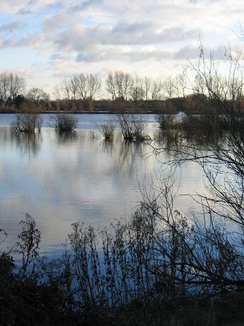 Swillbrook Lakes Wildlife Reserve