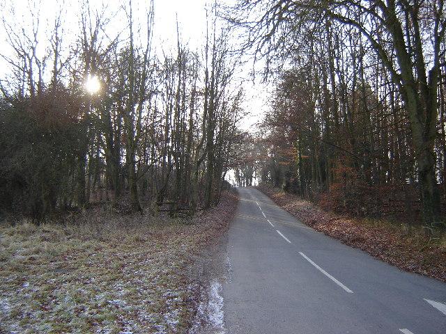 A Lane near Northington Down Farm