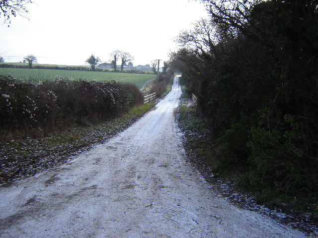 A Green Lane near Bradley