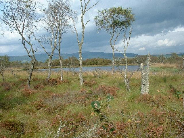 Lochan on Flanders Moss