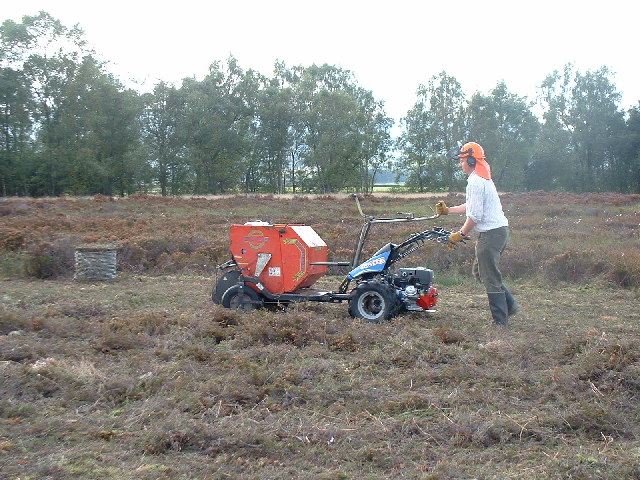 Cutting heather on Flanders Moss
