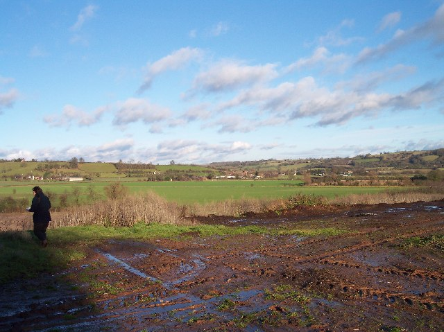 Flood Plain of the River Frome and the Filly Brook