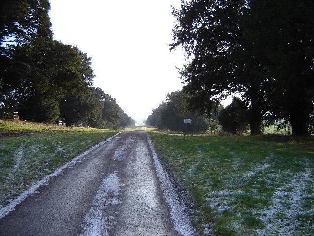 The Avenue, Chilton Candover