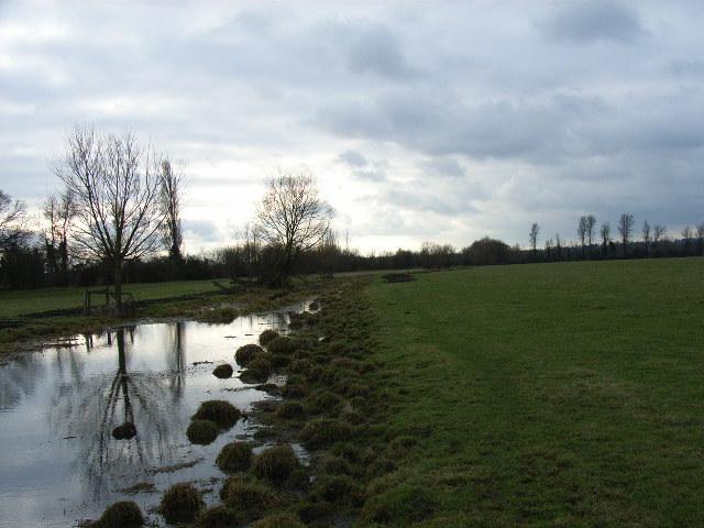 White Brook, Widbrook Common