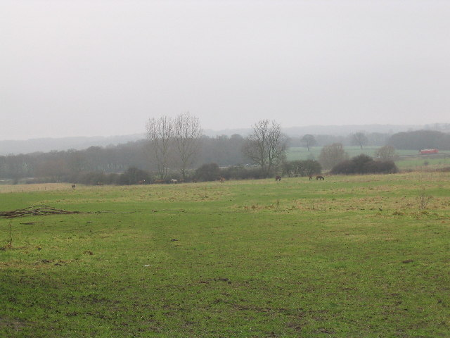 Field near River Roding and M11