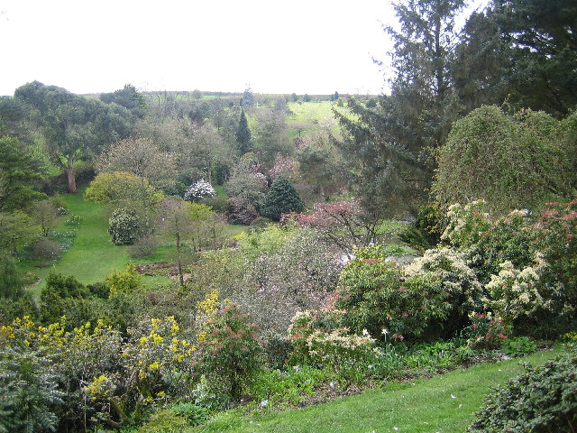 Marwood Hill gardens