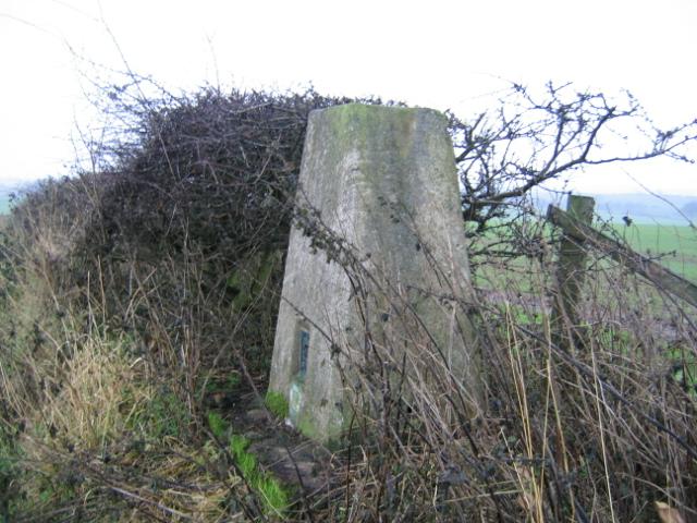 Triangulation Pillar at West House Field Farm