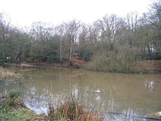 Earl's Path Pond