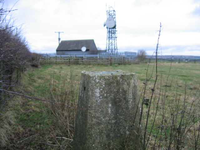 Triangulation Pillar at Charlaw Moor