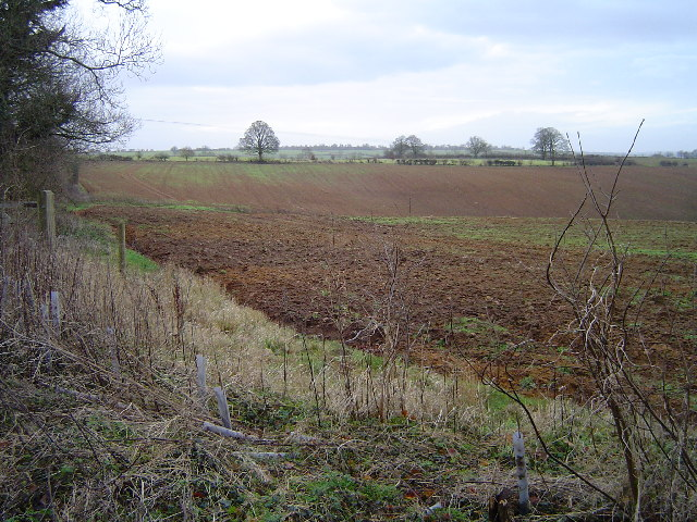 Field near Newbottle Farm