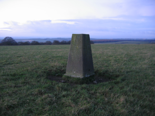 Triangulation Pillar off Brandon Lane