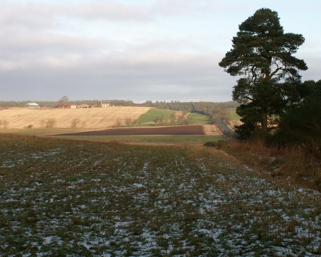 Farmland by Greenside, Drummy Wood