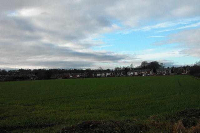 Houses bordering on farmland near Stanley.