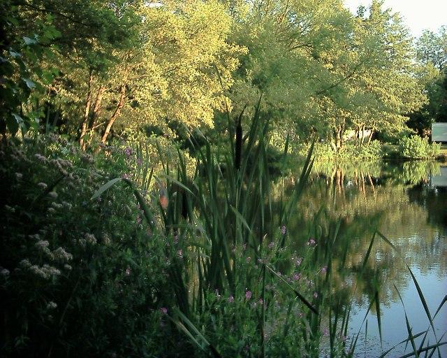 Hevingham Lake