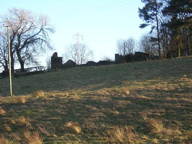 Ruin Near Muttonhole Road