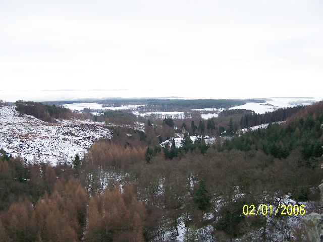 Birnam Wood and Rohallion Lodge