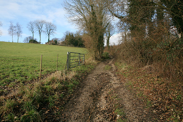Track from Warner's Cottage to Allens Farm