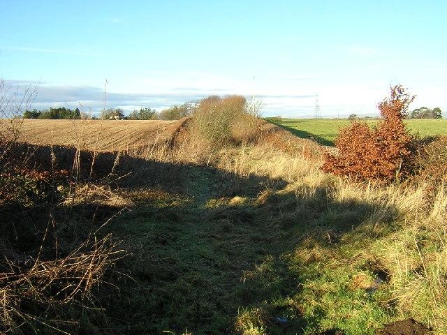 Overgrown Path Off Limekilnburn Road