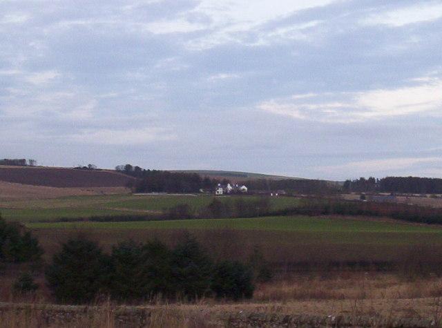 Criggie Farm and Fields