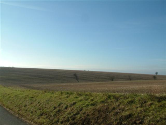 Fields above Froxfield