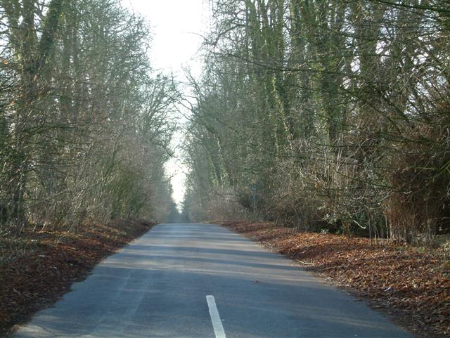 The road to Great Bedwyn