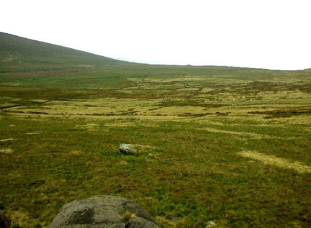 Derelict fields